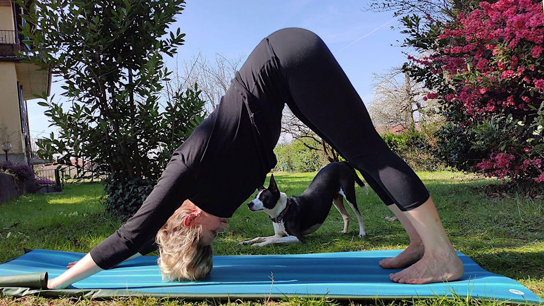 yoga video lezioni